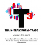 T3 - Logo