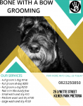 Bone with a bow dog grooming parlour  - Logo