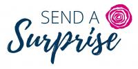 Send A Surprise - Logo