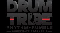 Drum Tribe PTY LTD - Interactive Drumming  - Logo
