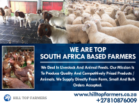 Hill Top Farmers Pty Ltd - Logo