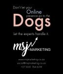 MSJ Marketing PTY lTD - Logo
