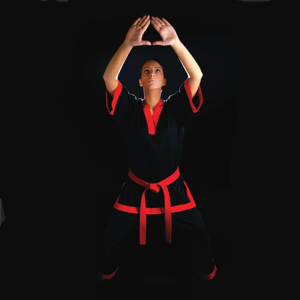 Bushido Martial Arts Supplies Martial Arts, Sports in Gauteng