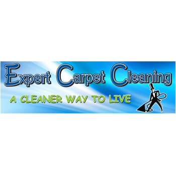 Expert Carpet Cleaning Cleaning Domestic Services In