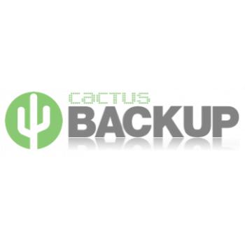 Cactus Backup Cloud Backup IT Companies JHB Cloud Backup And